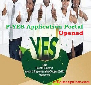 P-YES-Presidential Youth Empowerment Recruitment Form 2019