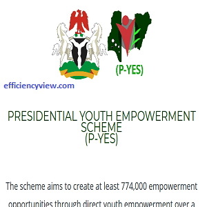 Presidential Youth Empowerment Scheme (P-YES)