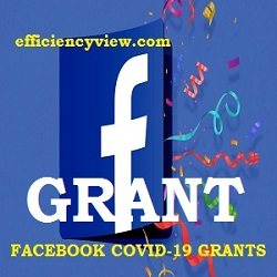 Facebook created $100M Grants Programme to support Small Businesses
