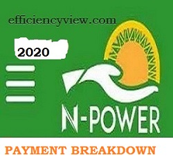 Photo of Npower Monthly Stipends Payment Breakdown by Mr Afolabi Imoukhuede