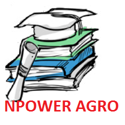 Photo of Closing date/deadline for filling 2020 Npower Agro FMARD Agency Validation Survey Form batch A&B Beneficiaries