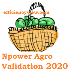 Photo of Npower Agro Validation Registration 2020 – npagro.fmardpace.ng/agent/register
