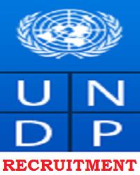 2020 UNDP Job Recruitment Application